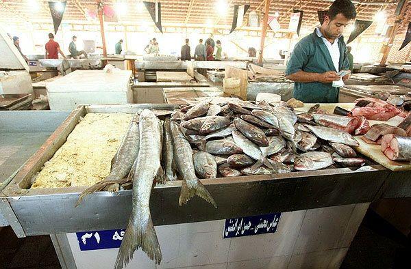 ممنوعیت فروش ماهی به اتباع خارجی در منطقه آزاد اروند