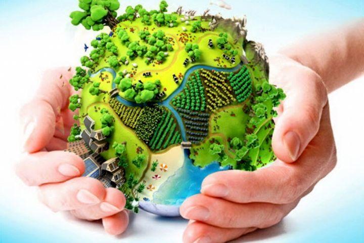 متولیان محیط زیست بنزین به کشورمان وارد کردهاند