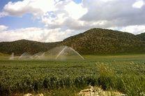 ۴۸ پروژه کشاورزی همزمان با هفته دولت در استان زنجان افتتاح شد