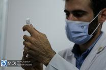 رکورد تزریق روزانه واکسن کرونا در کشور شکسته شد