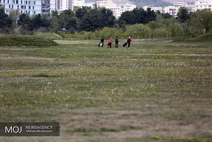 مسابقات گلف جام دیپلمات ها