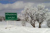 بارش برف در کرمانشاه به 4.3 سانتیمتر رسید/ کاهش دمای 8 درجه زیر صفر در راه است