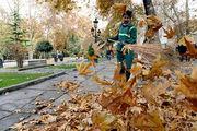 جمع آوری بیش از هزار تن برگ پاییزی در مناق 15 گانه شهرداری اصفهان