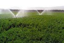 نگرانی کشاورزان مازندران از کاهش بارندگی در این استان