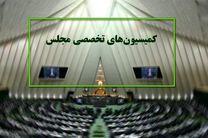 دستور کار کمیسیون های تخصصی مجلس در هفته آینده اعلام شد
