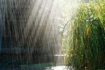 میزان بارندگی در کشور ۵۵.۲ درصد کاهش یافت