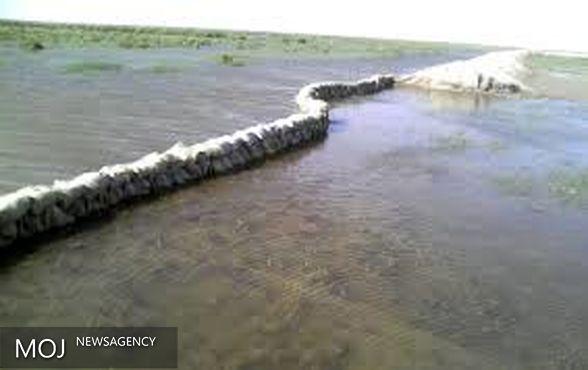 بازگشایی دایک مرزی در ورودی آب به تالاب هامون