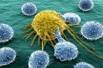 راز زنده ماندن سلول های سرطانی کشف شد