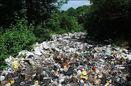 کوهی از زباله در دل جنگل سراوان/ سراوان امروز باید تلنگری برای مسئولان باشد