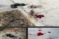اسامی مجروحان حادثه تروریستی نیکشهر مشخص شد