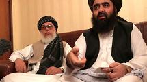 Taliban is seeking peace