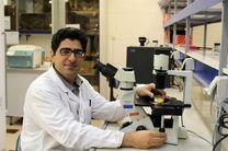 فاصله ۱۰ ساله ایران برای کاربردی کردن سلولدرمانی در کلینیکها