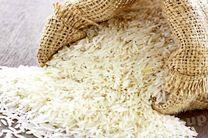 زمان ثبت سفارش واردات برنج کاهش یافت