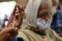 تولید واکسن کرونا مقاوم در برابر گرما در هند