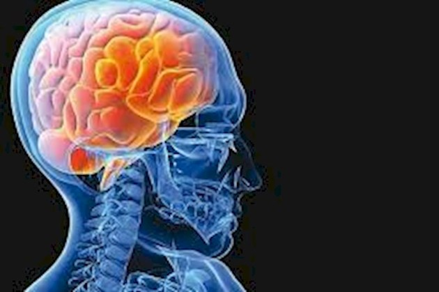 پیامک ریتم مغز را بهم میزند