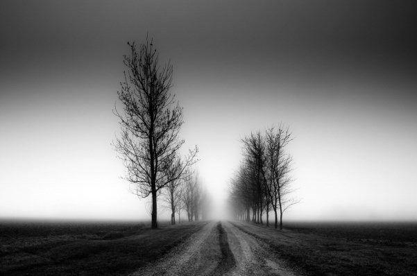 عکسهای سیاه و سفید خود را رنگ آمیزی کنید