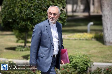 حاشیه جلسه هیات دولت - ۲۶ تیر ۱۳۹۸ / علیاکبر صالحی رییس سازمان انرژی اتمی