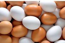 ظرفیت تولید یک میلیون و دویست هزار تن تخم مرغ در کشور وجود دارد