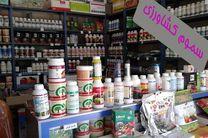 پلمپ فروشگاه های غیر مجاز سموم در همدان