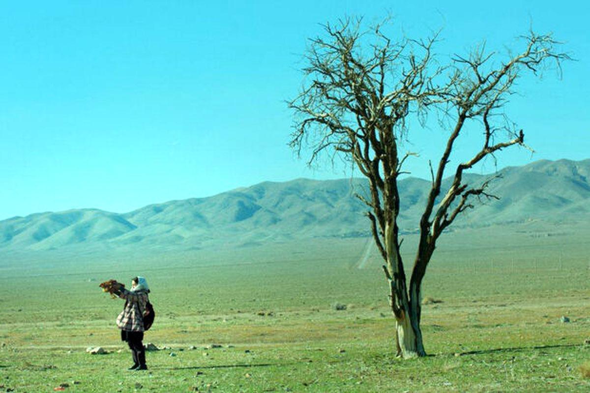 فیلم سینمایی «مسخ در مسلخ»  راهی اسپانیا میشود