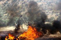 بازهم آتشسوزی در جنگل های لرستان؛ این بار در دلفان