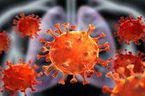 آمار مبتلایان به ویروس کرونا در شهرستان اردستان طی ۲۴ ساعت گذشته