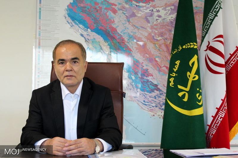 تولید بیش از 50 درصد گیشنیز کشور در استان همدان