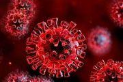 کرونا ویروس در پی جهش ها شدیدتر و عفونیتر نشده است