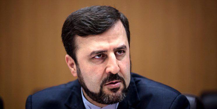 هرگونه تصمیم سیاسی موجب تضعیف همکاری های ایران و آژانس می شود