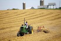 کشاورزان آمریکایی، قربانیان جنگ تجاری دونالد ترامپ هستند