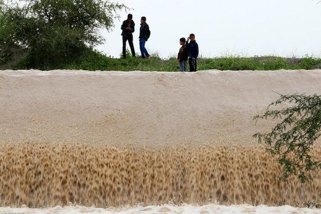 ۶ نفر در استان بوشهر بر اثر بارندگی فوت شدند/ 2 نفر مفقود هستند