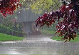 کاهش 44 درصدی میزان بارش در سراسر کشور