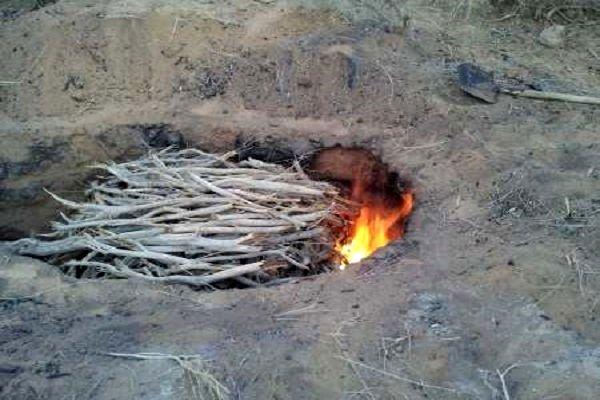 تخریب کوره زغال سازی غیرمجاز در شهرستان بندرلنگه