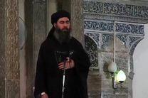 پسر ابوبکر البغدادی کشته شد