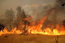 آتش سوزی  یک هکتار از مراتع در منطقه دالانکوه تیران و کرون