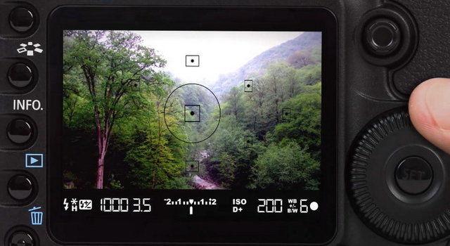 عکاسان راه یافته به نمایشگاه ثبت جهانی جنگل های هیرکانی معرفی شدند
