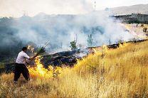 آتش، 25هکتار ازمراتع باغملک را از بین برد
