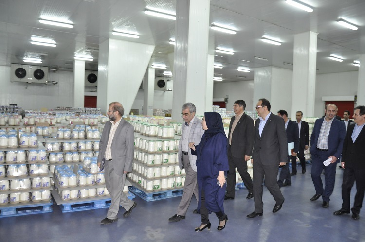 حمایت مالی بانک صادرات از فعالیتهای توسعهای شرکت تولیدی دامداران