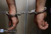 سارقان دوقلوی خودروهای شهروندان تهرانی دستگیر شدند