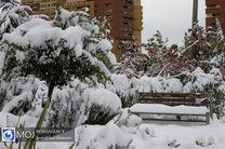 ورود سامانه بارشی جدید به کشور / بارش باران و برف در راه است