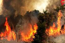 استقرار 20 آتش نشان موتور سوار در بوستان های جنگلی تهران