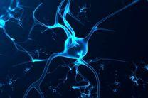 افزایش خطر مرگ و میر ناشی از کرونا در افراد مبتلا به پارکینسون