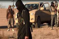 یک عضو وابسته به داعش در غزه به اعدام محکوم شد