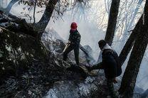 آتش های گسترده در جنگل ها و ناتوانی در مهار سریع  آنها