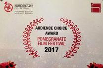 جایزه جشنواره فیلم انار به فیلم یه وا رسید