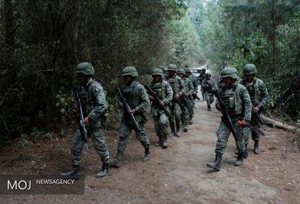 جنگ خشخاش در مکزیک