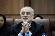 رئیس سازمان انرژی اتمی ایران وارد وین شد