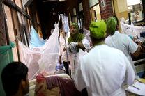 23 هزار نفر در بنگلادش به تب دنگی مبتلا شده اند