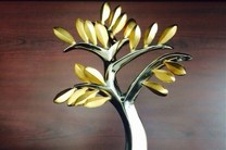 دبیر یازدهمین جشنواره هنرهای تجسمی فجر مشخص شد