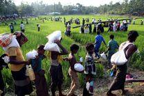 توزیع کمک های بشردوستانه ایران در بنگلادش